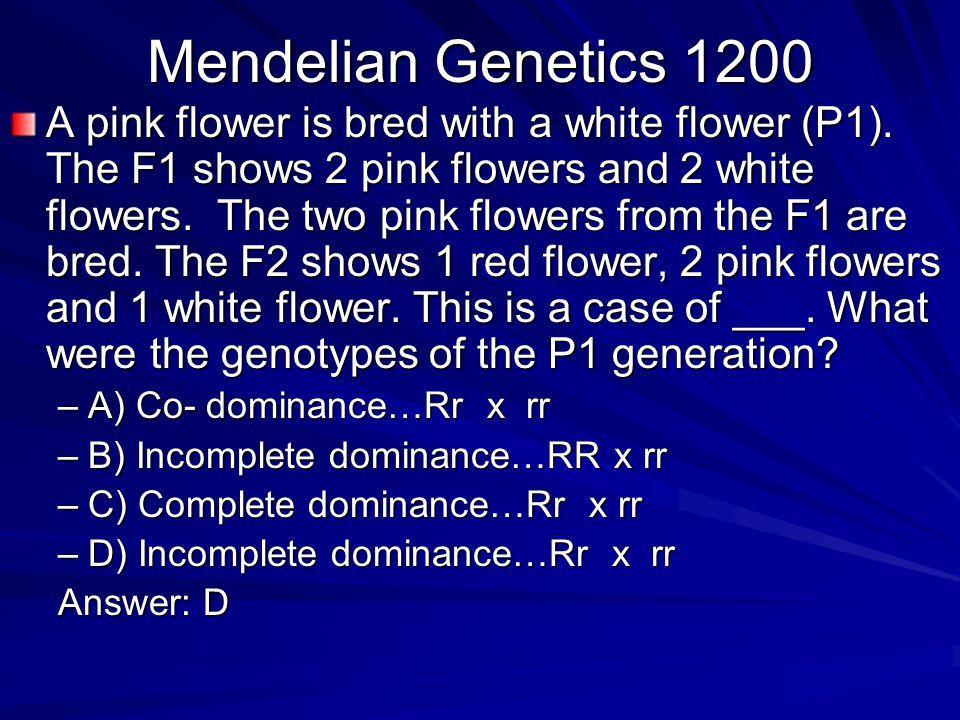 Mendelian Genetics 1200