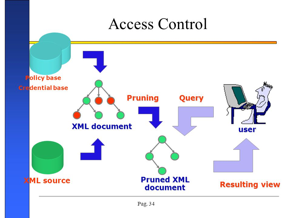 Access Control Pruning Query XML document user Pruned XML document