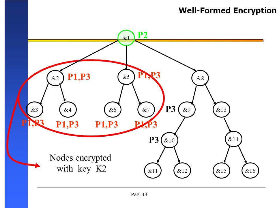 P2 P1,P3 P1,P3 P3 P1,P3 P1,P3 P1,P3 P1,P3 P3 Nodes encrypted