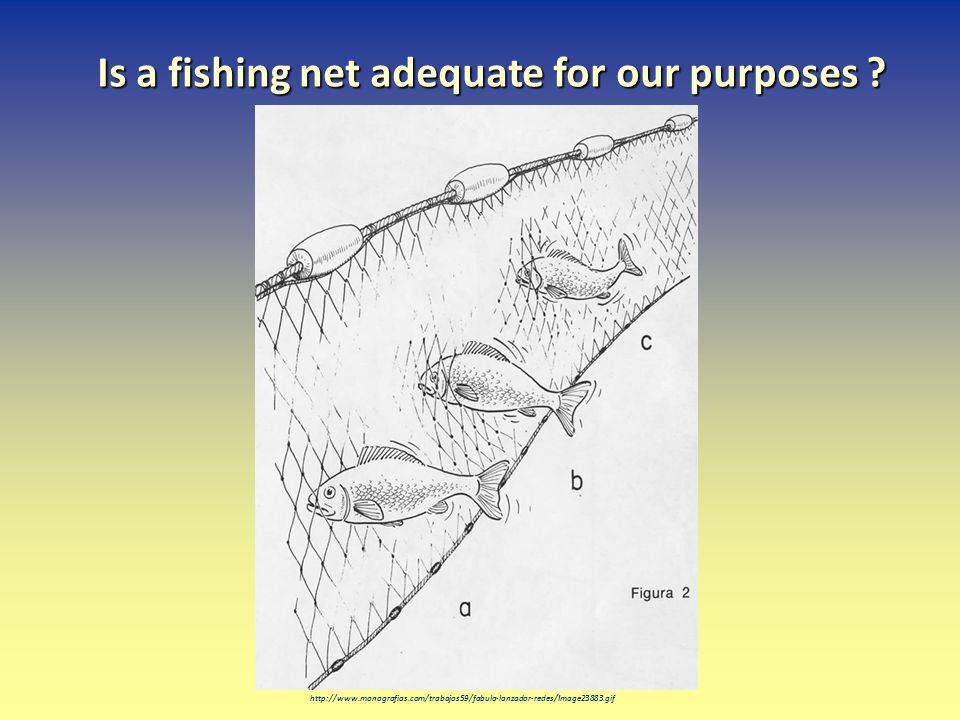 Is a fishing net adequate for our purposes