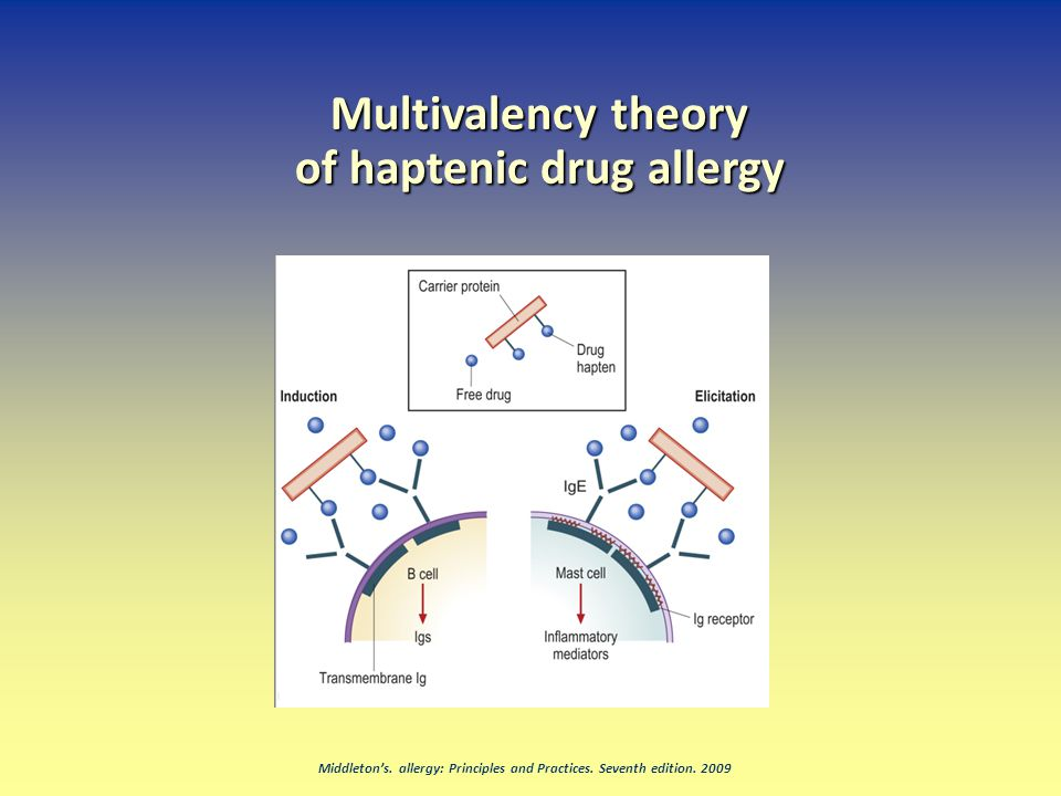 Multivalency theory of haptenic drug allergy