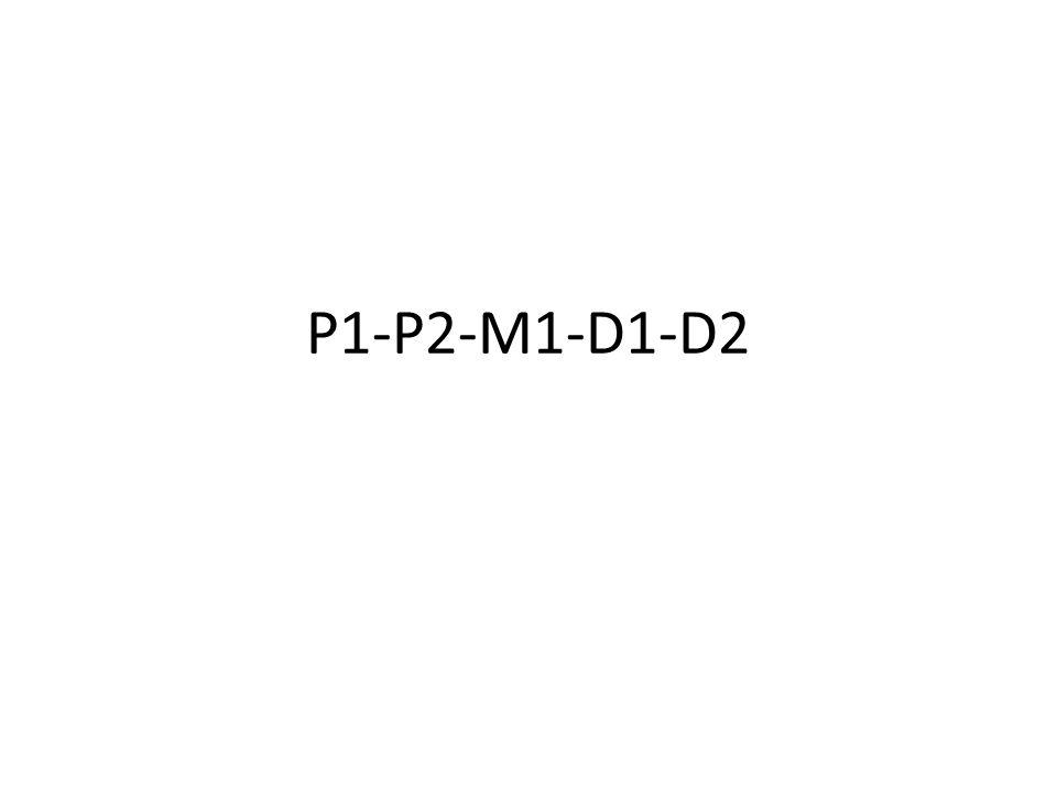 P1-P2-M1-D1-D2