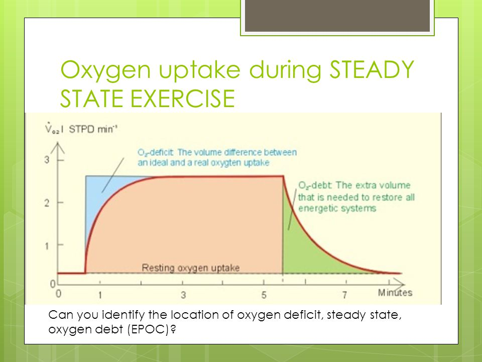 Oxygen uptake during STEADY STATE EXERCISE