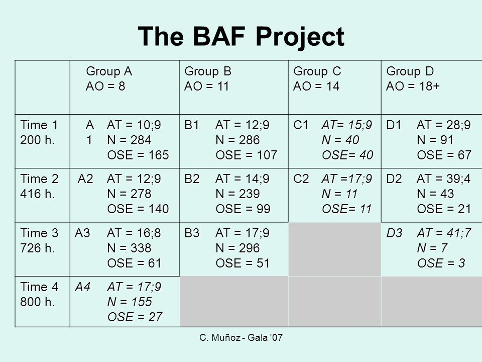The BAF Project Group A AO = 8 Group B AO = 11 Group C AO = 14 Group D