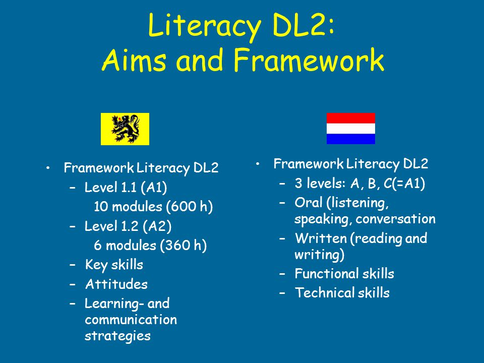 Literacy DL2: Aims and Framework
