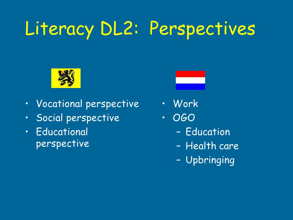 Literacy DL2: Perspectives