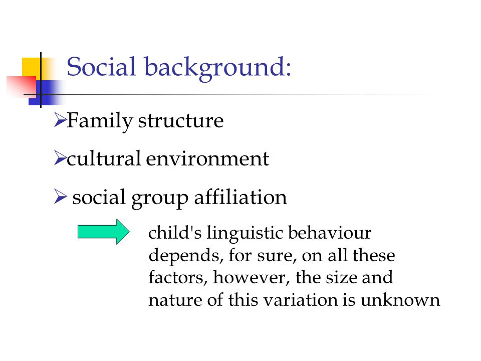 Social background: Family structure cultural environment