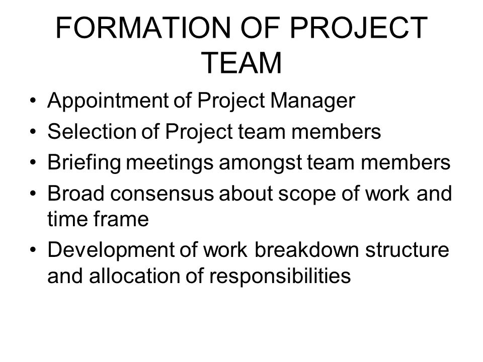 FORMATION OF PROJECT TEAM