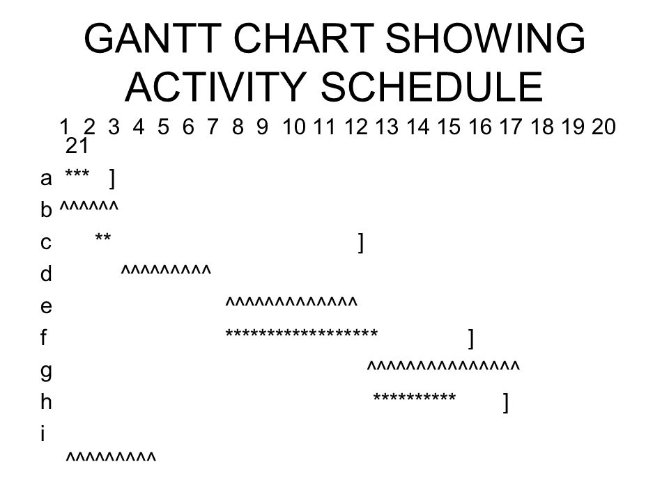 GANTT CHART SHOWING ACTIVITY SCHEDULE