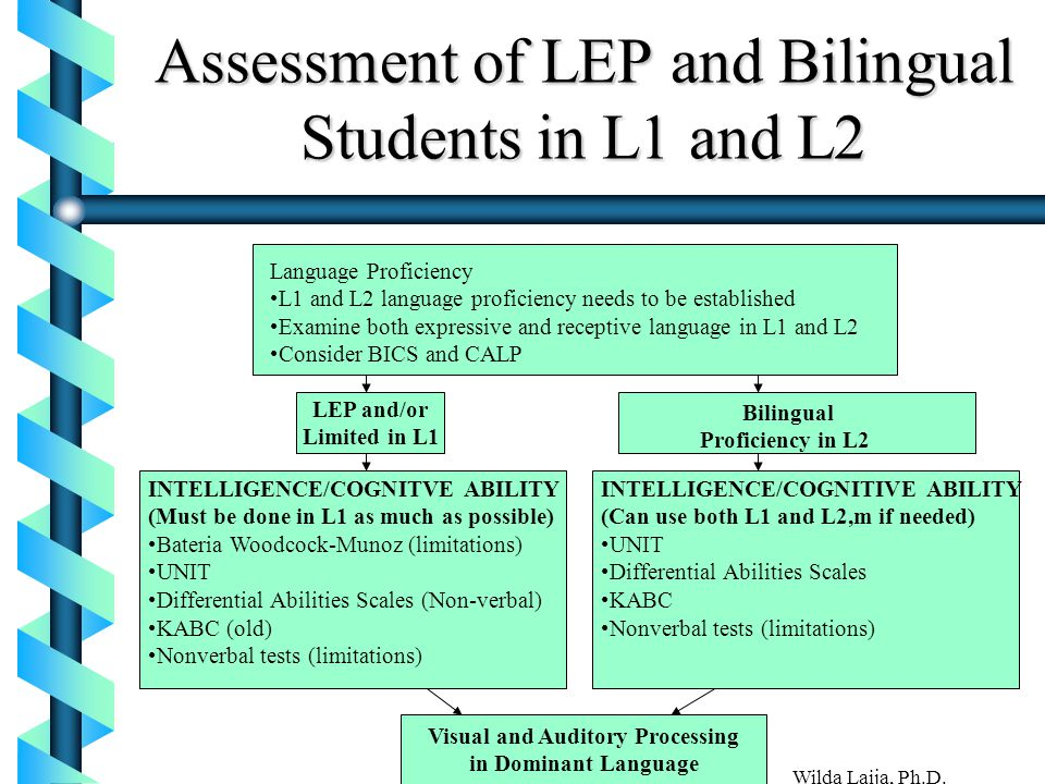 Assessment of LEP and Bilingual Students in L1 and L2