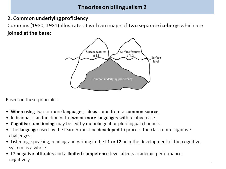 Theories on bilingualism 2