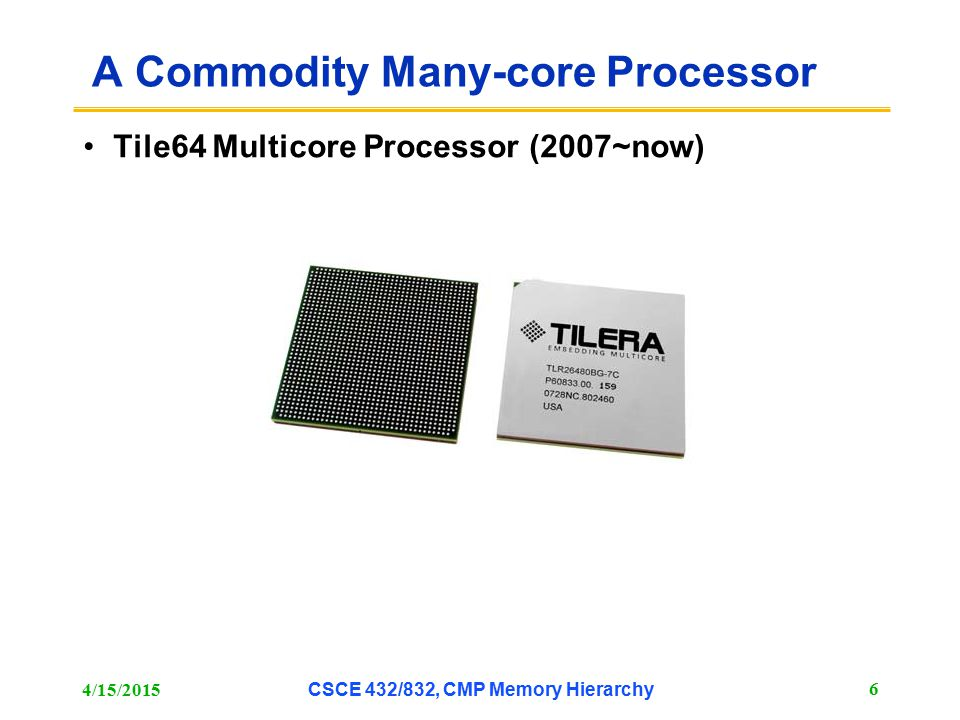 A Commodity Many-core Processor