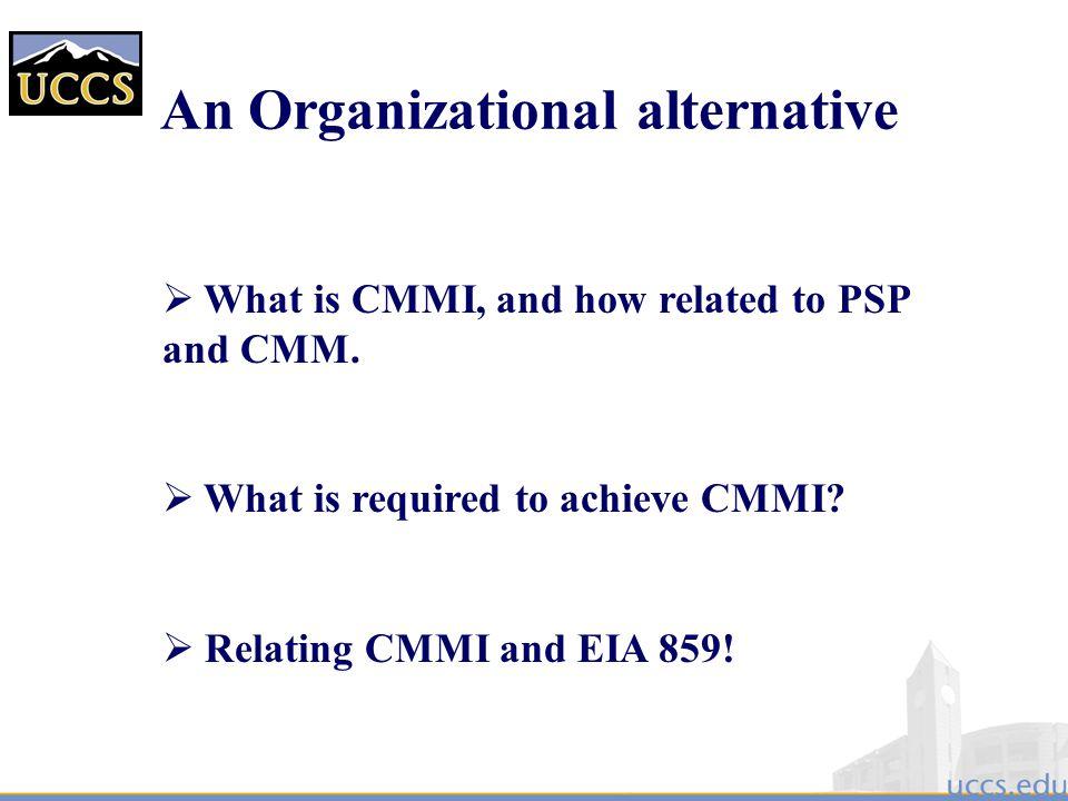 An Organizational alternative