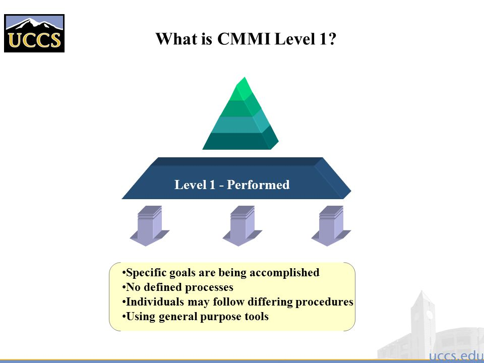 What is CMMI Level 1 Level 1 - Performed