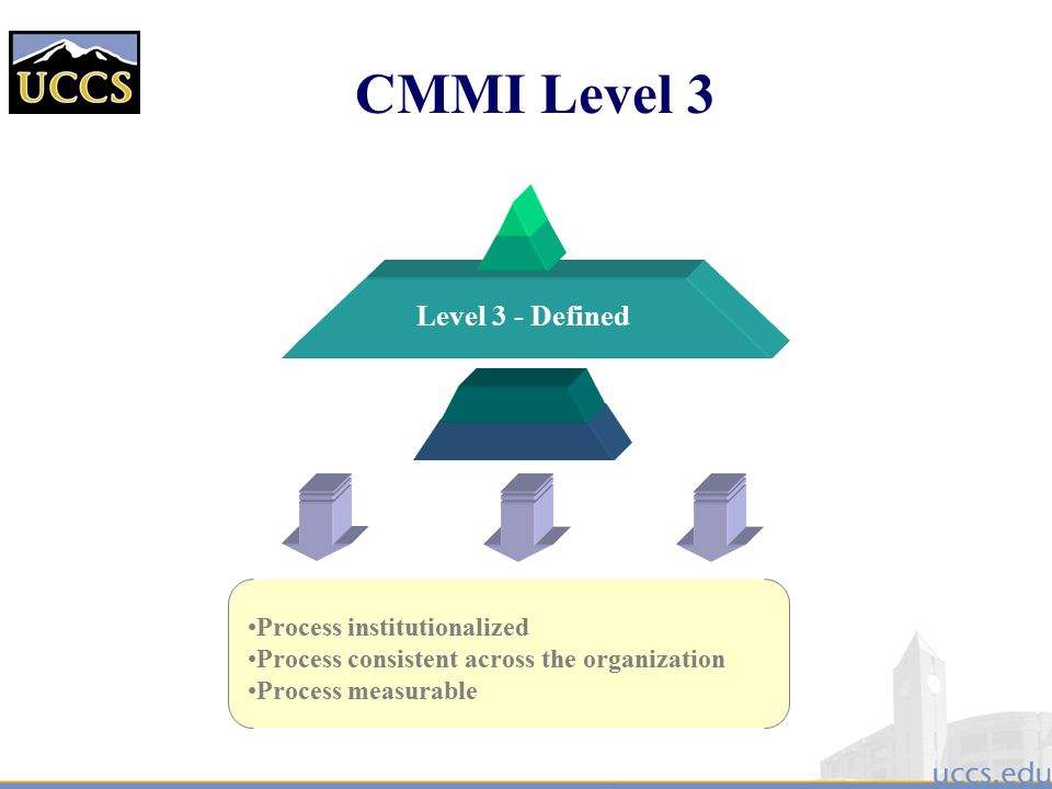 CMMI Level 3 Level 3 - Defined Process institutionalized