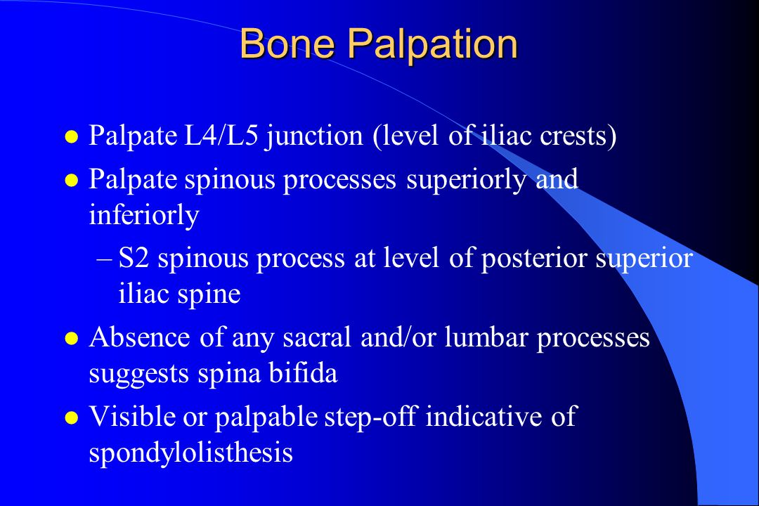 Bone Palpation Palpate L4/L5 junction (level of iliac crests)