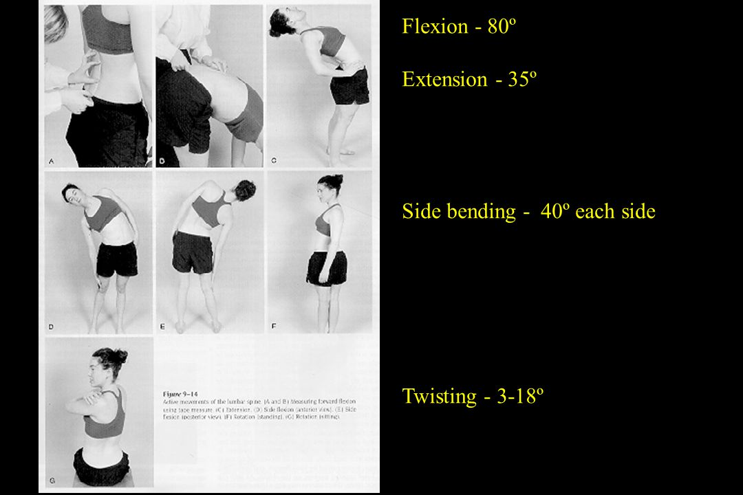 Flexion - 80º Extension - 35º Side bending - 40º each side Twisting - 3-18º