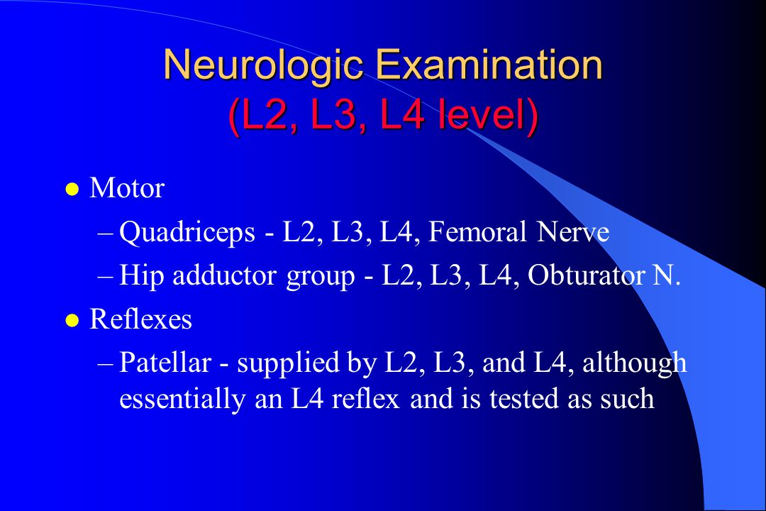 Neurologic Examination (L2, L3, L4 level)