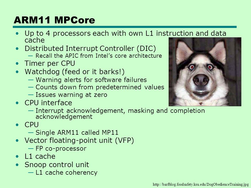 ARM11 MPCore Up to 4 processors each with own L1 instruction and data cache. Distributed Interrupt Controller (DIC)
