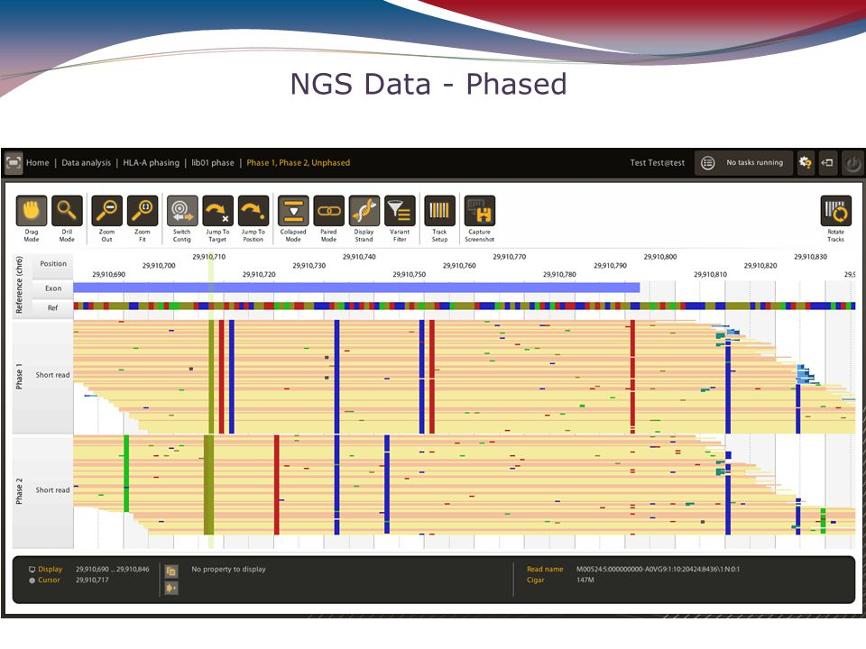 NGS Data - Phased 24