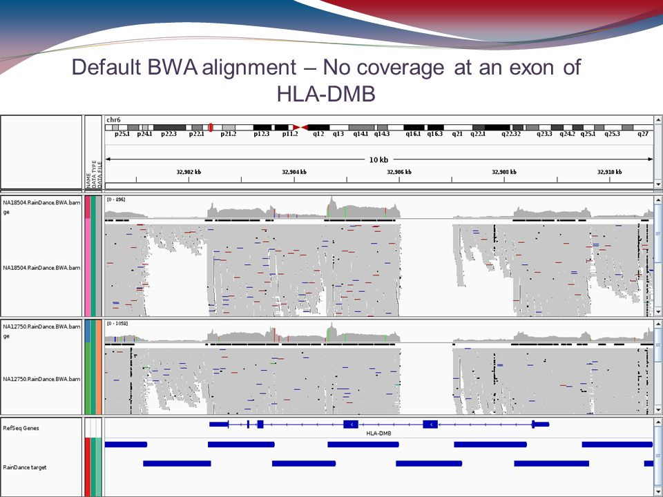Default BWA alignment – No coverage at an exon of HLA-DMB