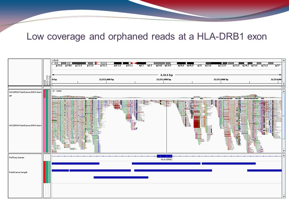 Low coverage and orphaned reads at a HLA-DRB1 exon