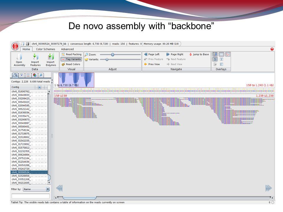 De novo assembly with backbone