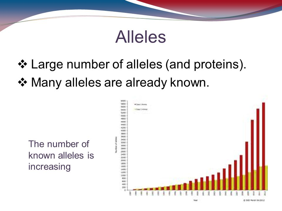 Alleles Large number of alleles (and proteins).