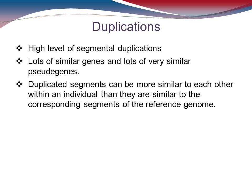 Duplications High level of segmental duplications