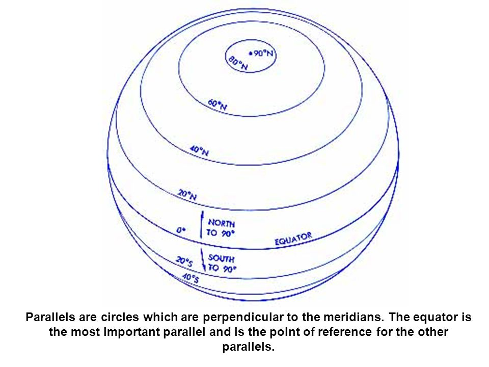 Parallels are circles which are perpendicular to the meridians