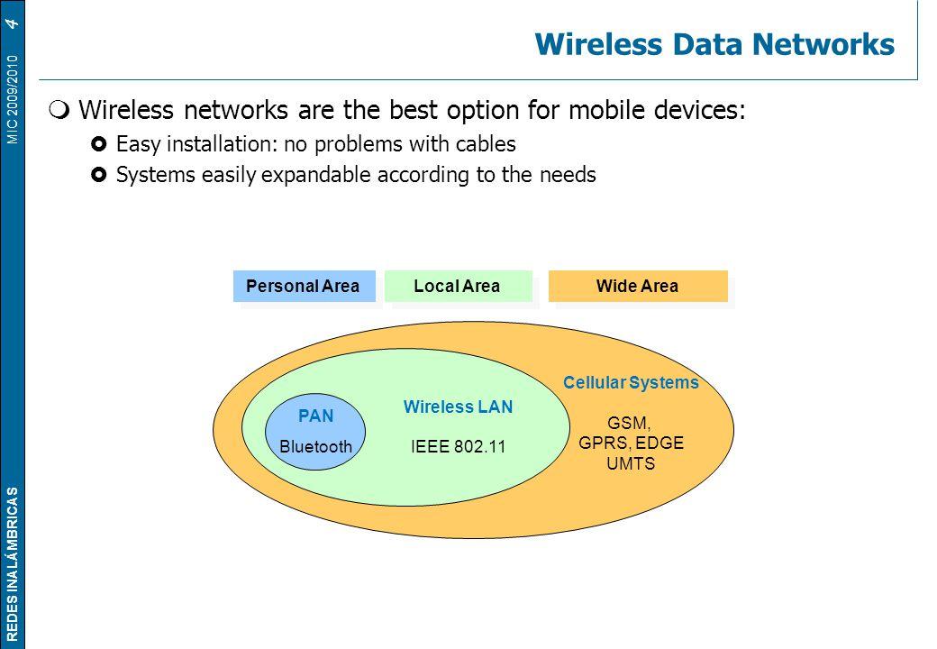 Wireless Data Networks