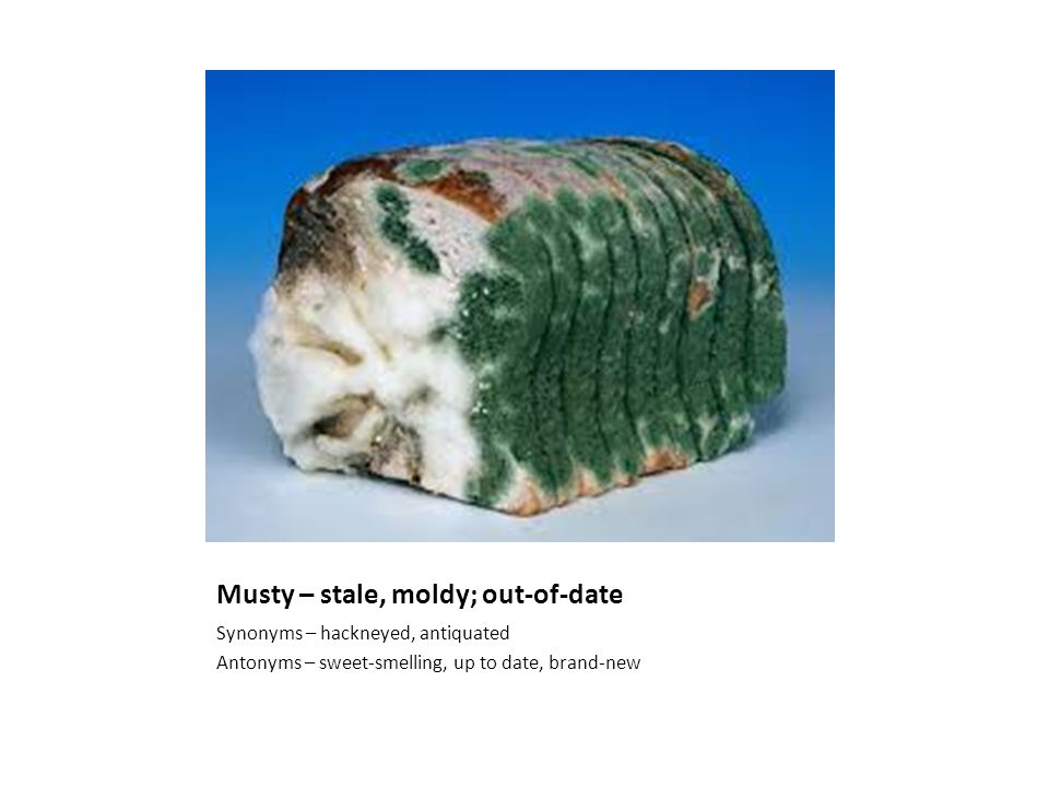 Musty – stale, moldy; out-of-date