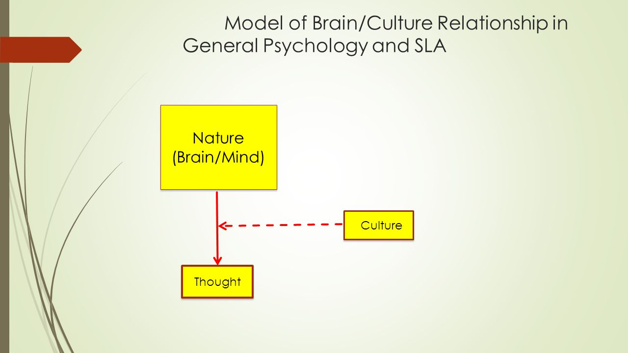 Model of Brain/Culture Relationship in General Psychology and SLA