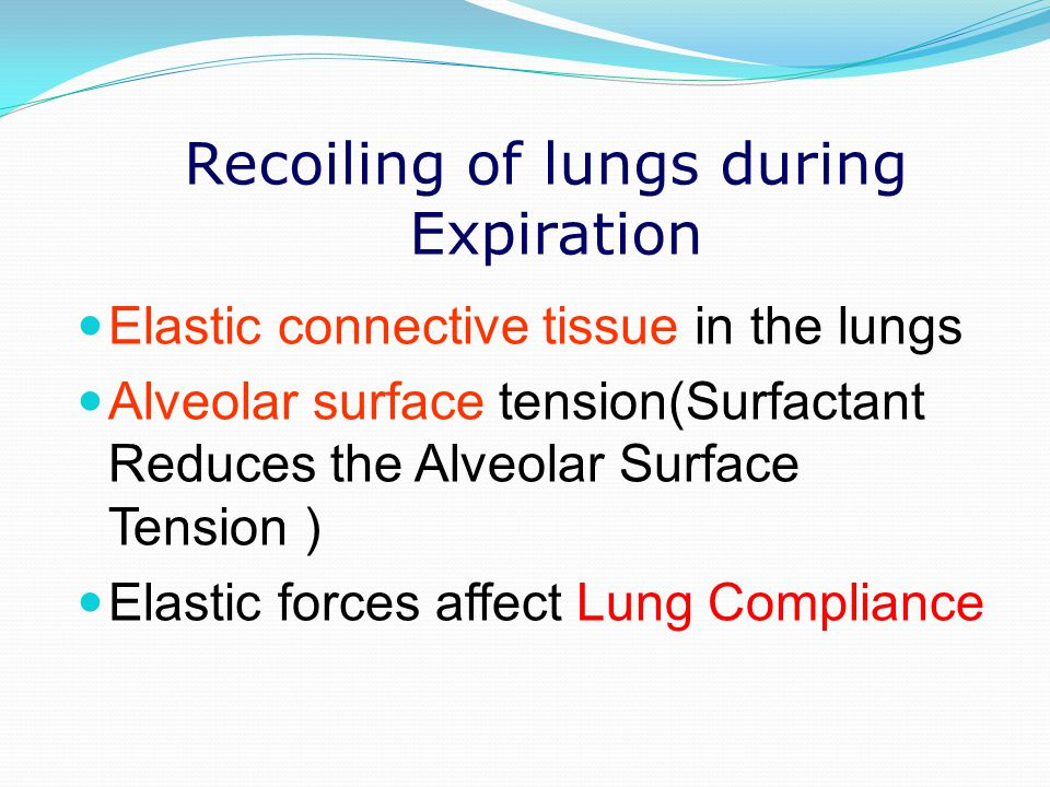 Recoiling of lungs during Expiration