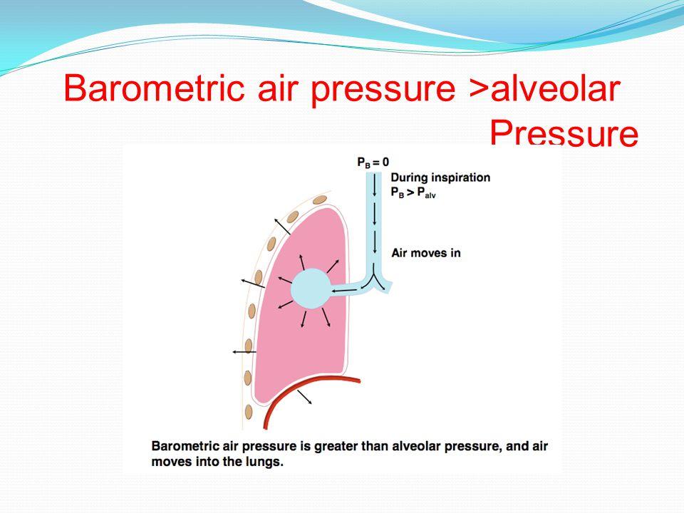Barometric air pressure >alveolar Pressure