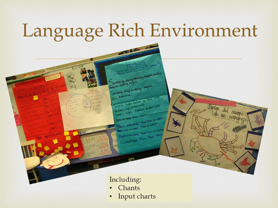 Language Rich Environment