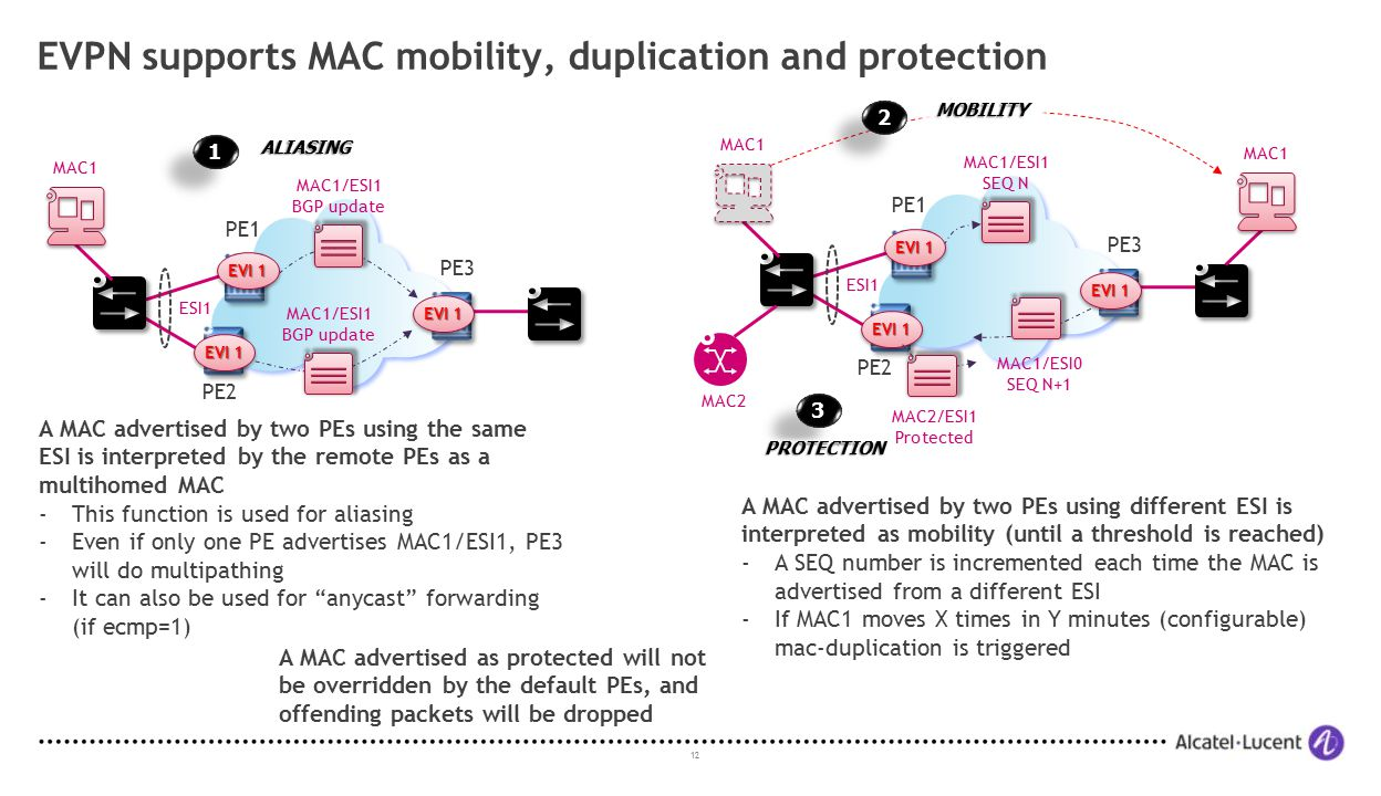 EVPN supports MAC mobility, duplication and protection