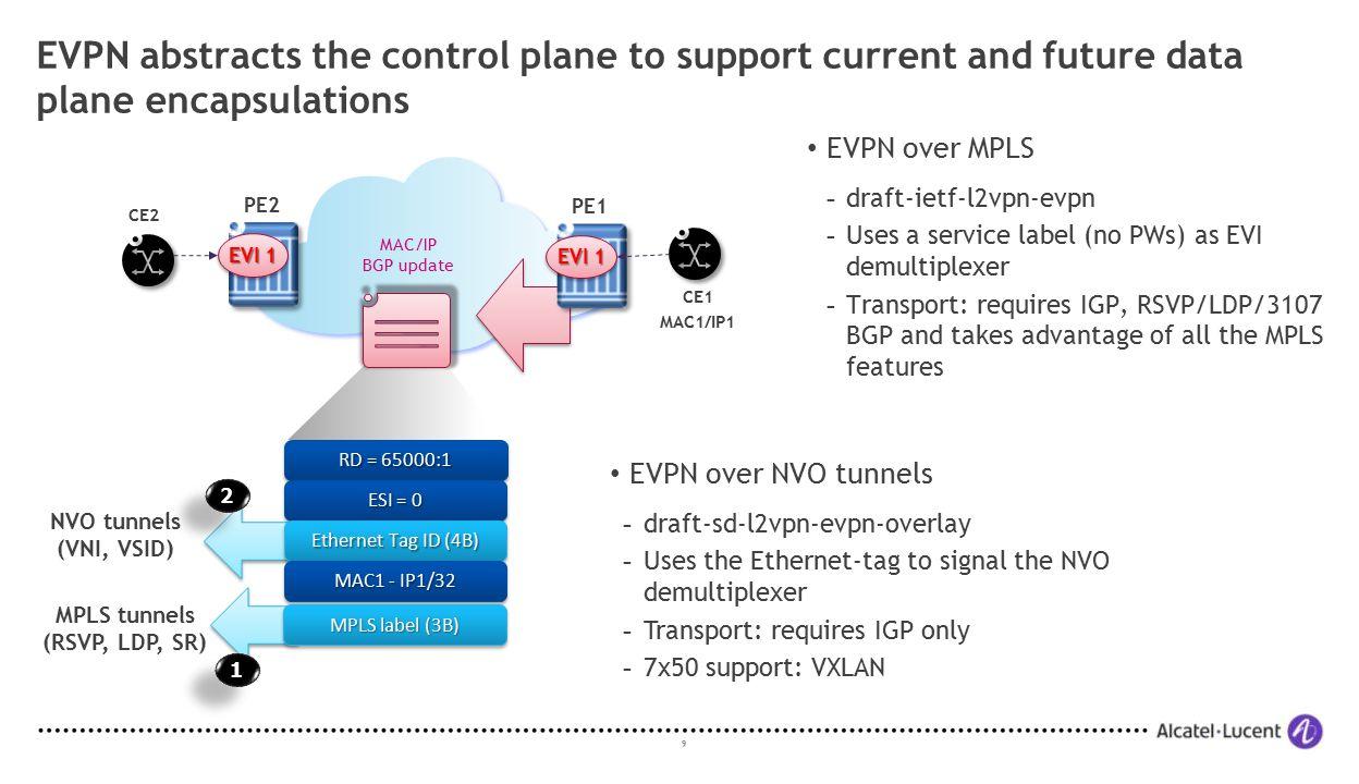 MPLS tunnels (RSVP, LDP, SR)