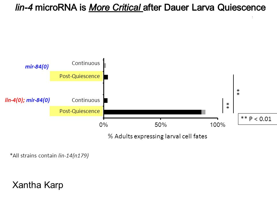 lin-4 microRNA is More Critical after Dauer Larva Quiescence