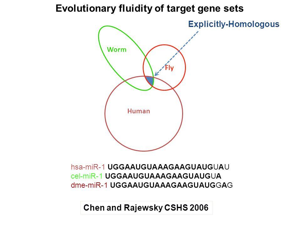 Evolutionary fluidity of target gene sets