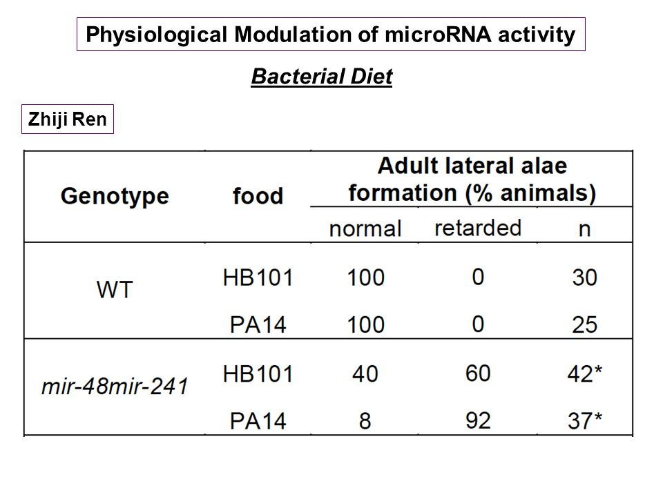 Physiological Modulation of microRNA activity