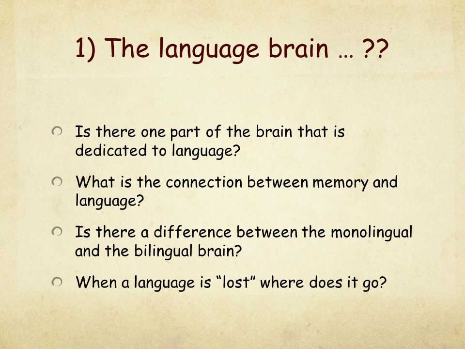 1) The language brain … Is there one part of the brain that is dedicated to language What is the connection between memory and language
