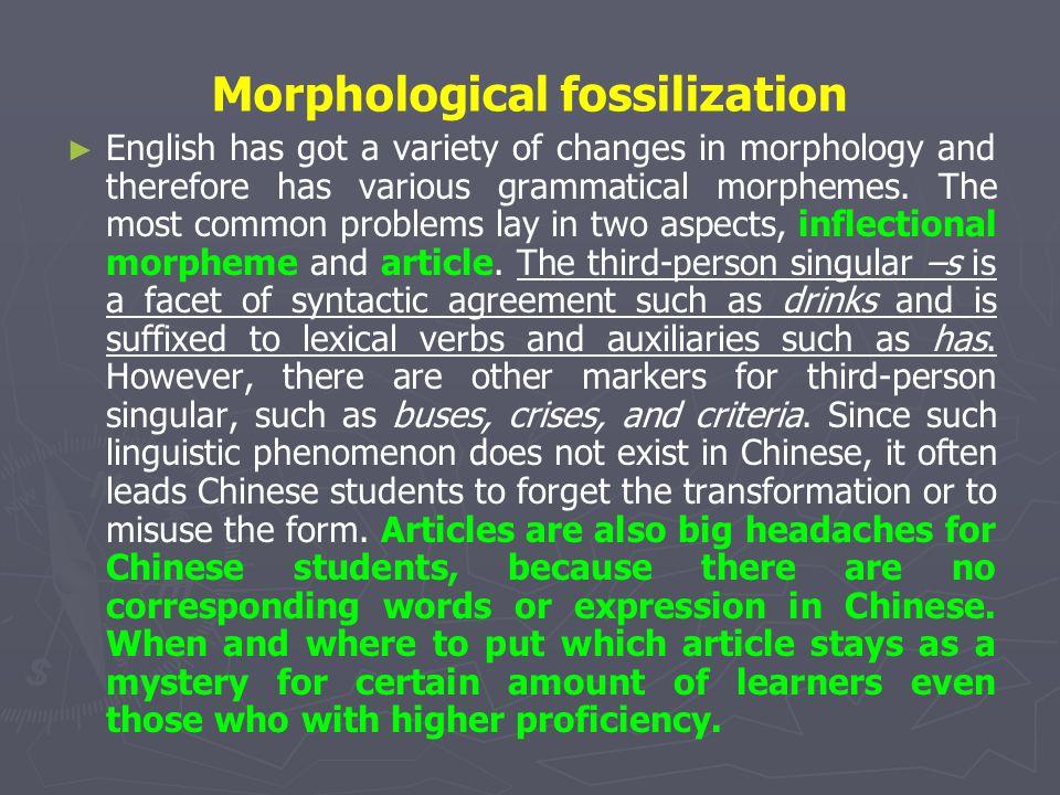 Morphological fossilization