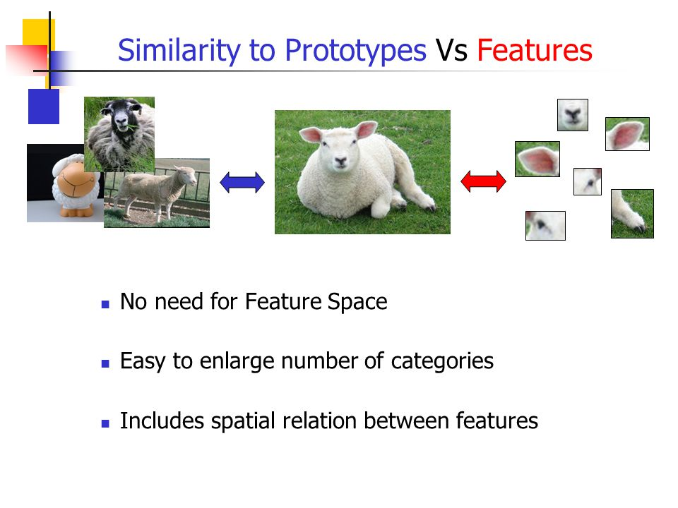 Similarity to Prototypes Vs Features