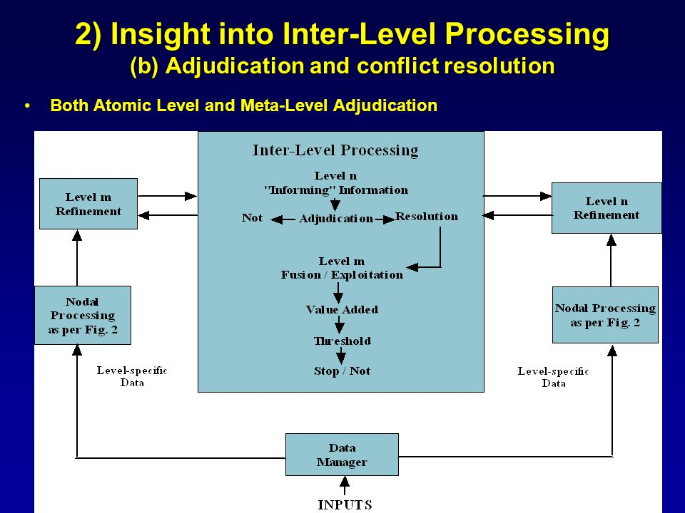 2) Insight into Inter-Level Processing (b) Adjudication and conflict resolution