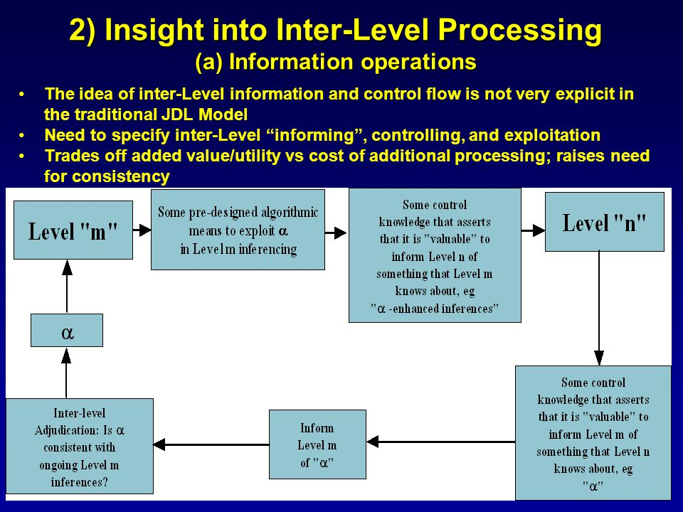 2) Insight into Inter-Level Processing (a) Information operations