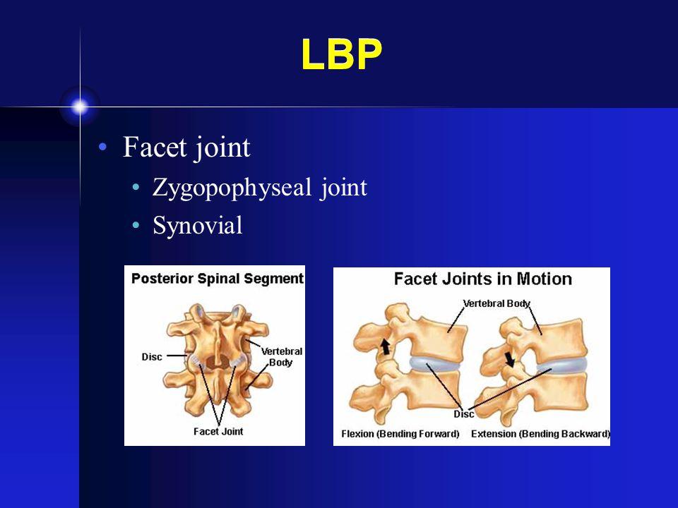 LBP Facet joint Zygopophyseal joint Synovial