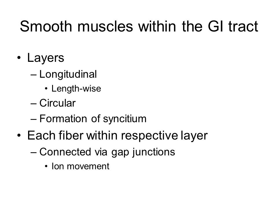 Smooth muscles within the GI tract