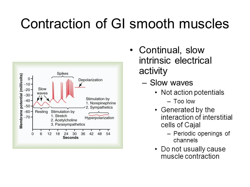 Contraction of GI smooth muscles