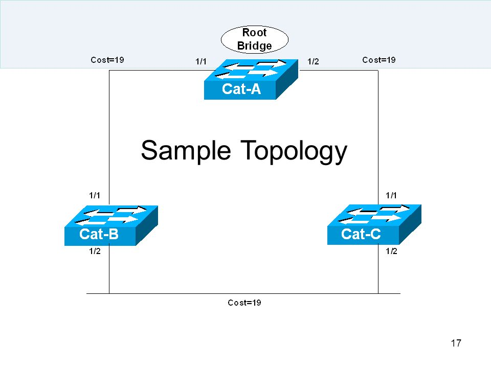 Sample Topology
